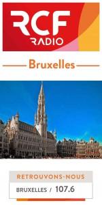 Site-icone-Bruxelles-web